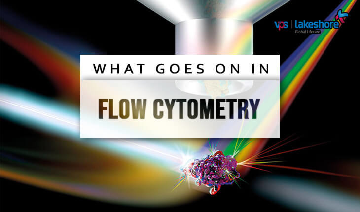 What Goes On in Flow Cytometry?