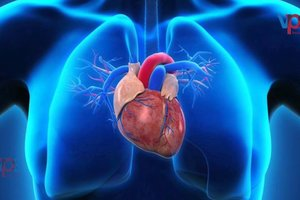 uploads/video/peripheralheartdisease-treatment-eLY5PPDUJiM2Coh.jpg